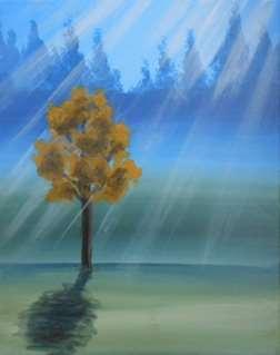 A Tree's Rays
