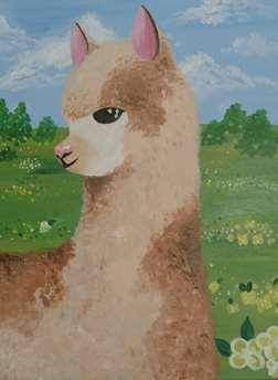 Alpaca Picnic