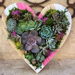 Sips and Succulents Valentine's heart workshop