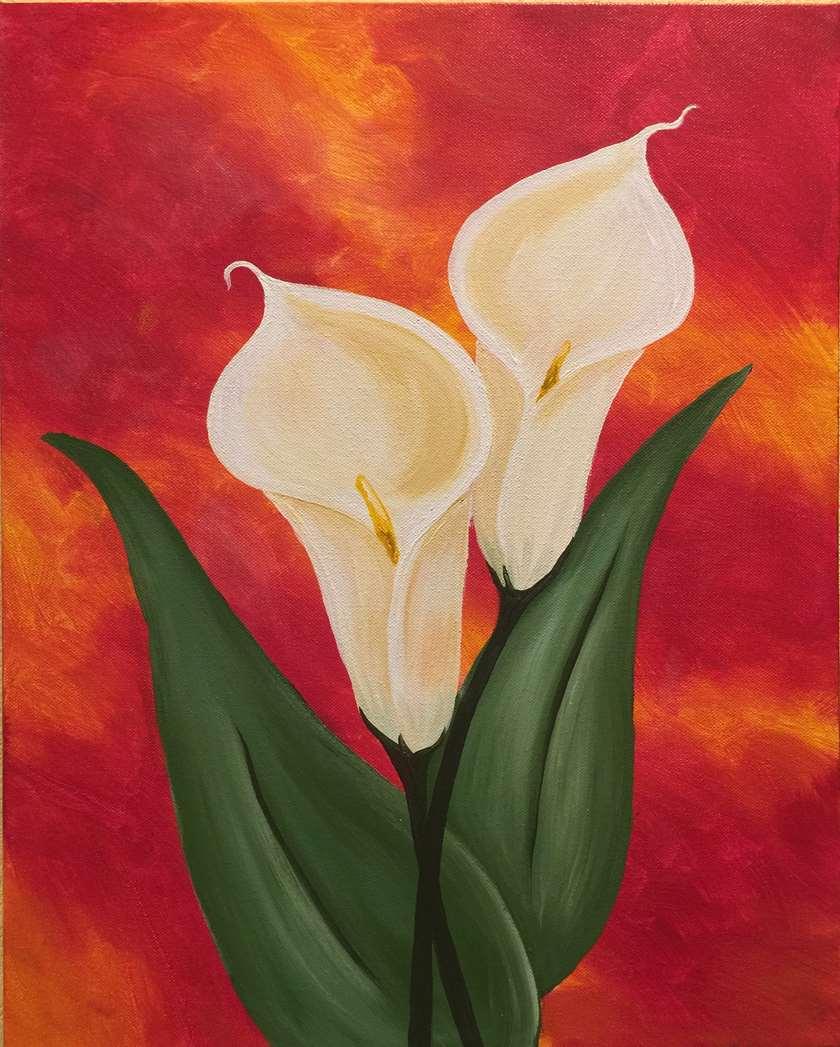 Breathtaking Calla Lilies