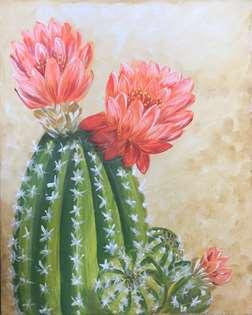 Cactus in Bloom