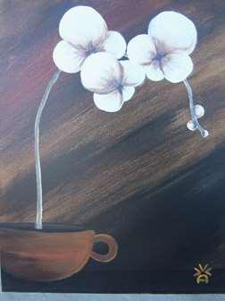 Chai Tea Orchid