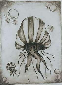 Charcoal Jellyfish
