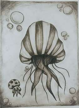 Charcoal Jellyfish