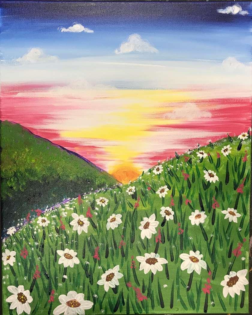 Daisy Field at Sunrise
