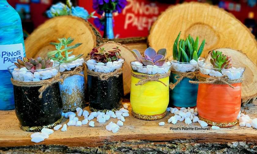 DIY Trio succulent workshop! Buy 3 Get 1!  code: succulent