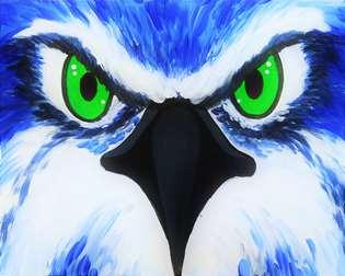 Eye of the Hawk