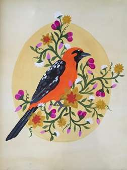 Floral Oriole