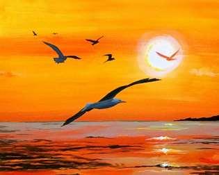 Gull-den Sunset
