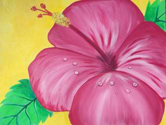 Hibiscus in Pink