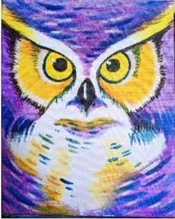 It's Owl About You