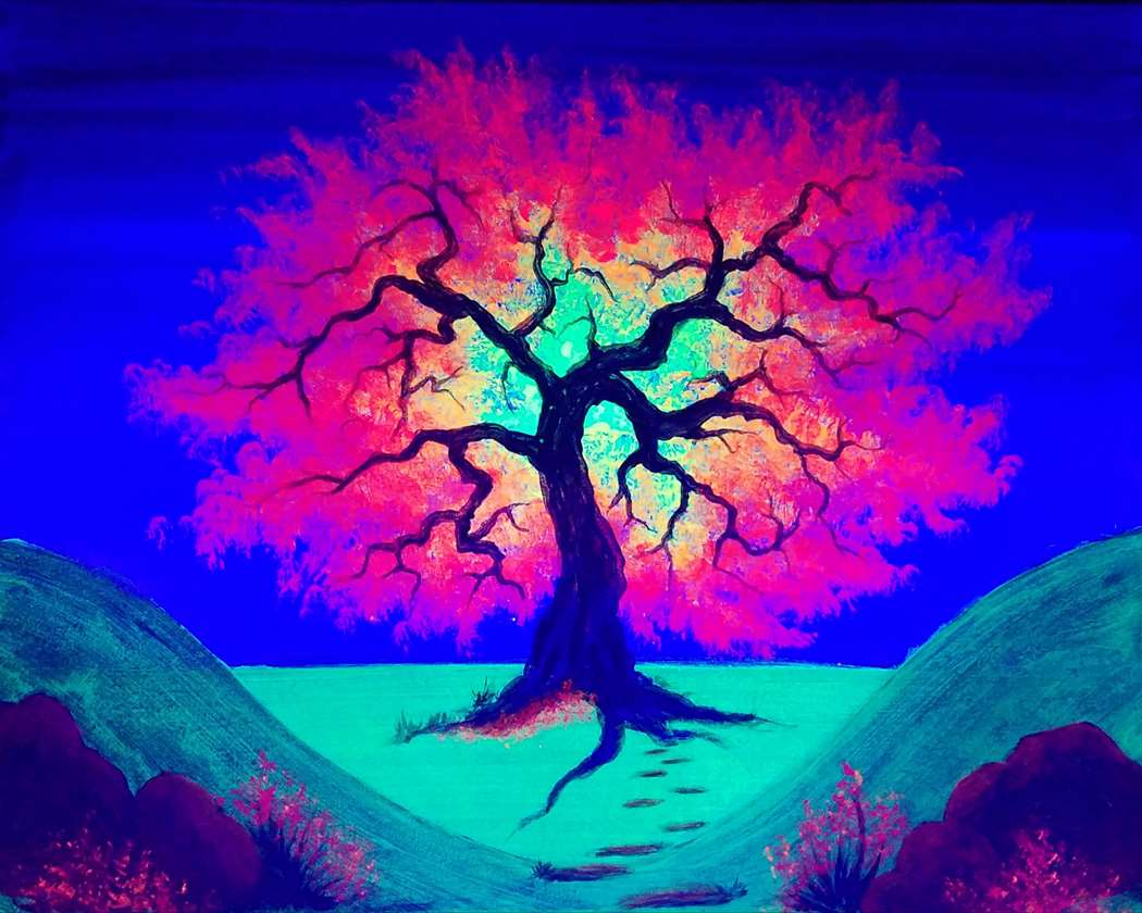 Japanese Maple Aglow (Blacklight)