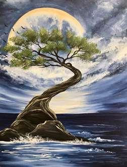 Lone Cypress Tree