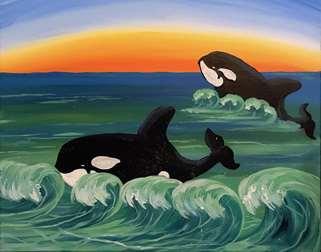 Orcas in Laguna Beach