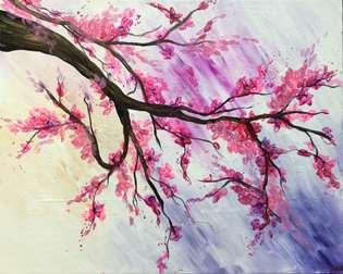 Pink Cherry Blossom