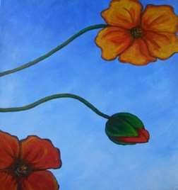 Poppies in Three