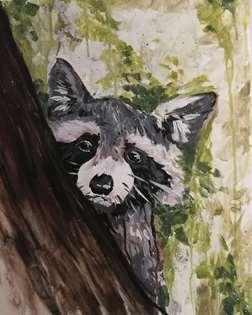 Raccoon Woods