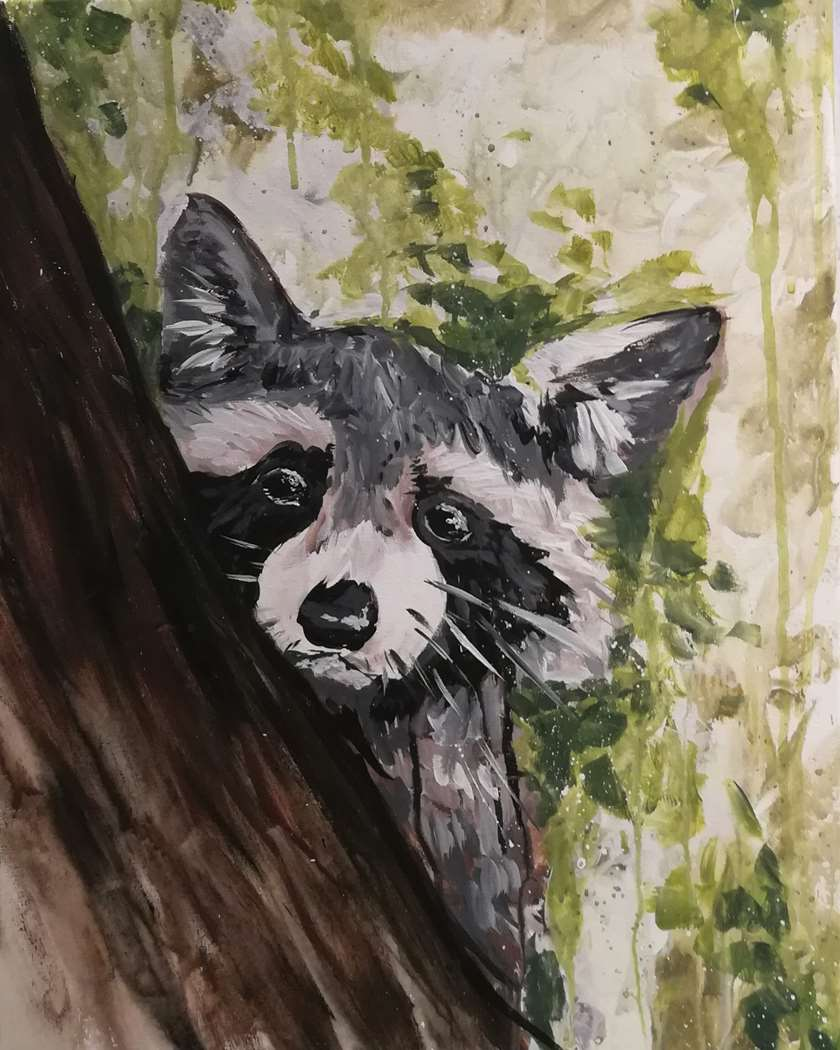 Raccoon Woods