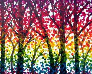 Rainbow Forest