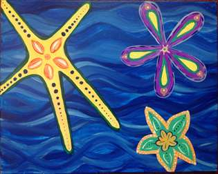 Serene Sea Stars