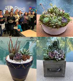 Sips and Succulents Workshop