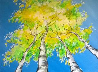 Skyward Aspens!