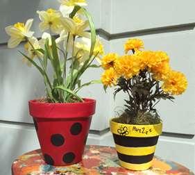 Spring Terra Cotta Pots