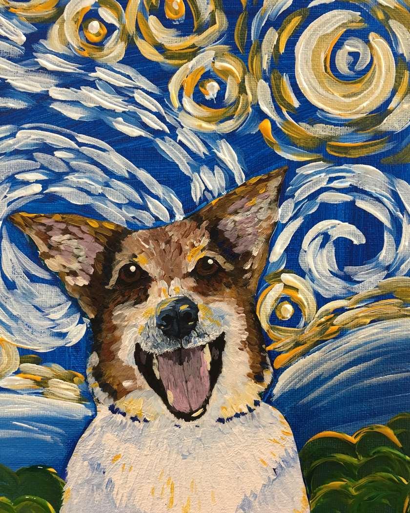 Starry Night Project Pet