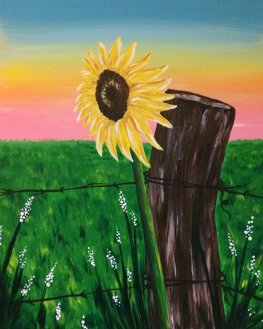 Sunflower Sunset