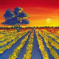 Sunset Vine