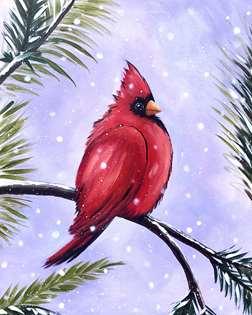 The Bachelor Cardinal