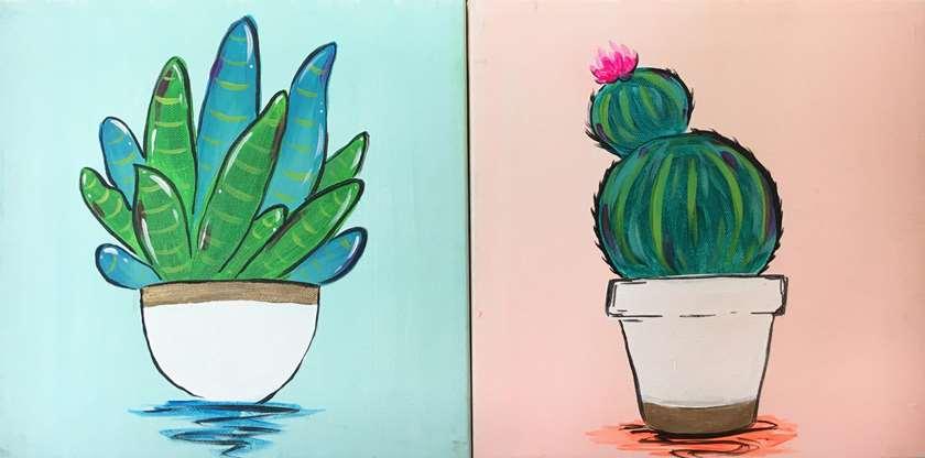 Tiny Succulents