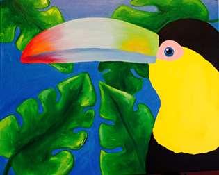 Toucan's Rainforest