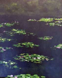 Water Lilies at Night